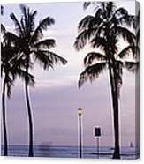 Palm Trees On The Beach, Waikiki Canvas Print