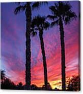 Palm Trees Sunset Canvas Print