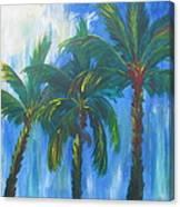 Palm Trio Canvas Print
