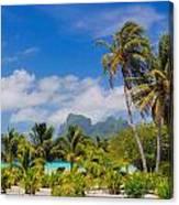 Palm Waving Canvas Print