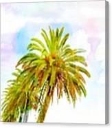 Palmed Colours Canvas Print