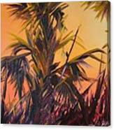 Palmettos At Dusk Canvas Print