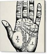 Palmistry. Planetary And Zodiacal Canvas Print