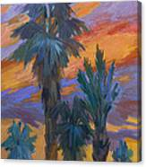Palms And Sunset Canvas Print