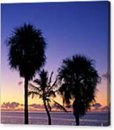 Palms At Sunrise Canvas Print