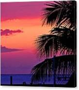 Palmtree At Sunset Canvas Print