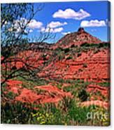 Palo Duro Canyon State Park Canvas Print