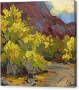 Palo Verde Trees Canvas Print
