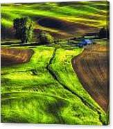 Palouse Glow Canvas Print