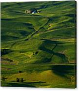Palouse Green Canvas Print