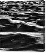 Palouse In Black And White Canvas Print