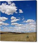 Palouse Skies Canvas Print