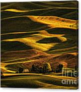 Palouse Sunset From Steptoe Butte Canvas Print