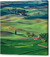 Palouse - Washington - Farms - 4 Canvas Print