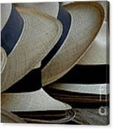 Panama Hats Canvas Print