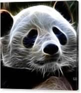 Panda - 4934 - F Canvas Print