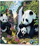 Panda Valley Canvas Print