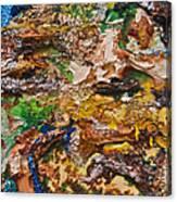 Panjshir Canvas Print