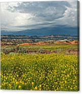 Panorama Striaght Cliffs And Rabbitbrush Escalante Grand Staircase  Canvas Print