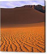Panoramic Mesquite Sand Dune Patterns Death Valley National Park Canvas Print