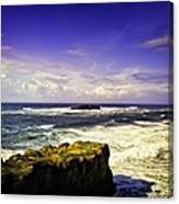 Panoramic View Of The Pacific Ocean Canvas Print