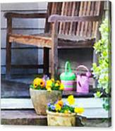 Pansies And Watering Cans On Steps Canvas Print