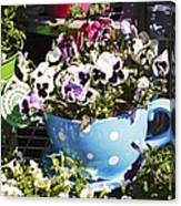 Cup Of Pansies Canvas Print