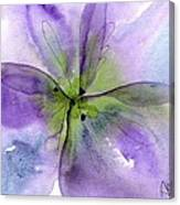 Pansy 1 Canvas Print