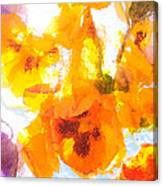 Pansy Flowers Canvas Print