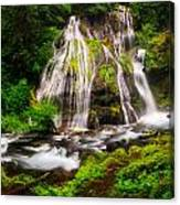 Panther Falls Canvas Print