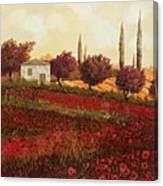 Papaveri In Toscana Canvas Print