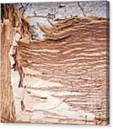 Paper Bark Background Canvas Print