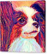 papillion II Canvas Print