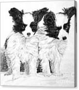 Papillon Puppies Canvas Print