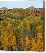 Paradise Autumn Canvas Print