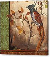 Paradise Flycatcher Canvas Print