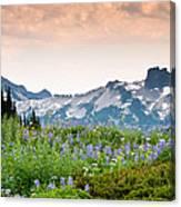 Paradise Meadows And The Tatoosh Range Canvas Print