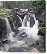 Paradise River Cascade Mt Rainier Canvas Print