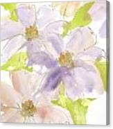 Parfait Clematis Canvas Print