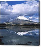 Parincota Lauca National Park Andes Canvas Print