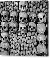 Paris Catacombs Canvas Print