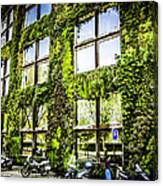 Paris Moss Canvas Print