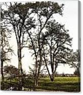 Park At Blackie Spit Canvas Print