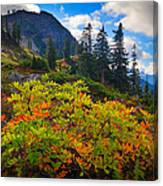 Park Butte Fall Color Canvas Print