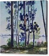 Park On Harvard Two Canvas Print