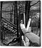 Park Trail Bw Canvas Print