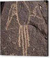 Parrot Glyph At Petroglyph National Monument Canvas Print