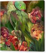 Parrot In Parrot Tulips Canvas Print