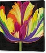 Parrot Tulip 2 Canvas Print