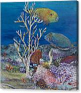 Parrots Of The Reef Canvas Print